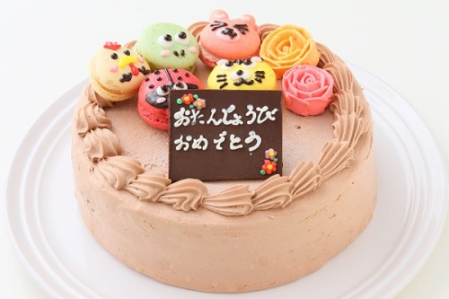動物マカロンチョコ生ケーキ 5個付き 5号 15cm