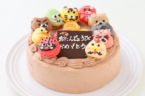 動物マカロンチョコ生ケーキ 10個付き 5号 15cm