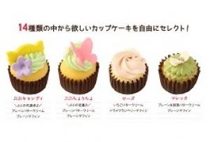 カップケーキ 選べる6個セット