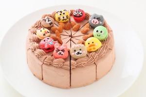 チョコ生ケーキ 6号 10カット