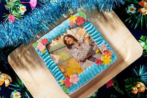 写真ケーキ チョコ生 5号 15cm