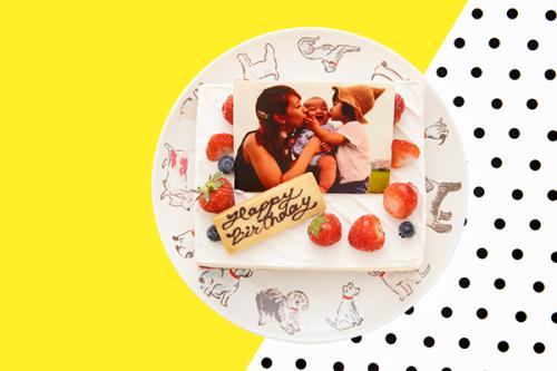 低糖質ケーキ 写真ケーキ レアチーズ 13.5x11cm 4.5号