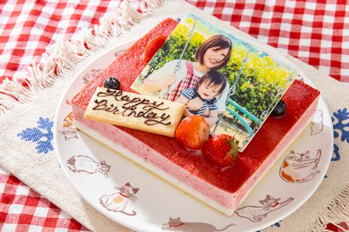 低糖質ケーキ 写真ケーキ 苺ココナッツ 13.5x11cm 4.5号