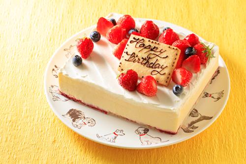 低糖質ケーキ 砂糖不使用! レアチーズ 13.5x11cm 4.5号