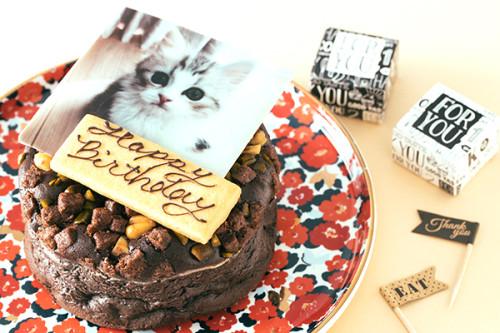 写真ケーキ ナッツたっぷり しっとりガトーショコラ 4号 12cm