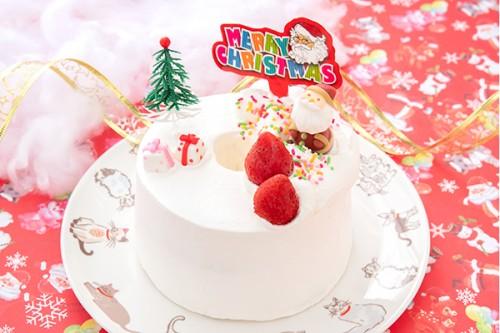 クリスマスケーキ2019 シフォンクリスマス 5号 15cm