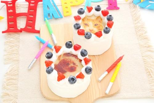 犬・猫も食べられる写真ケーキ 3号 9cm