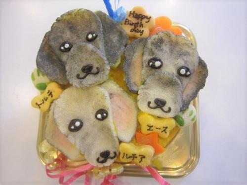 似顔絵 犬用ケーキ 15cm 顔3個バージョン