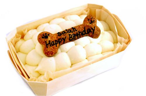 ワンコ(犬用)デコレーションケーキ(スクエア小) 14cm×10cm