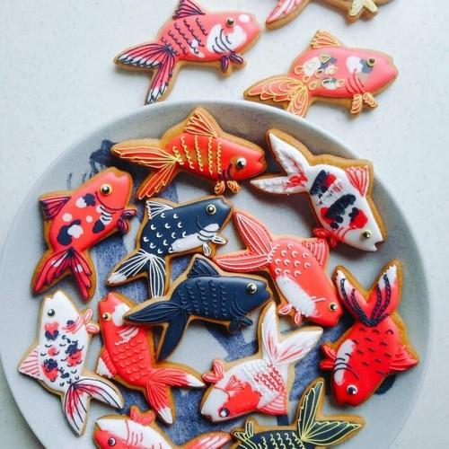 金魚がいっぱいアイシングクッキー