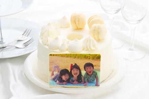 ふらの牛乳シフォンケーキ 5号 写真あり