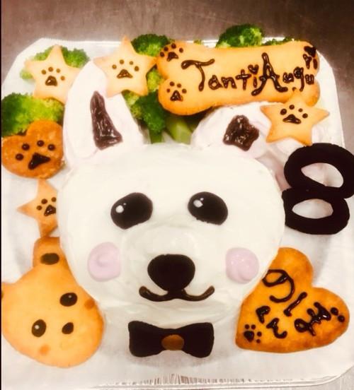 わんちゃんお誕生日お顔ケーキ