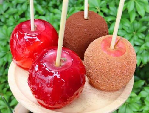 数量限定 もぎたて季節のりんご飴Aセット