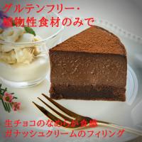 京豆腐の生チョコレートケーキ【卵・乳・小麦・白砂糖不使用】