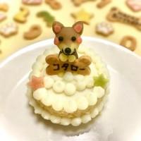 愛犬マスコットケーキ 米粉スポンジ6cm