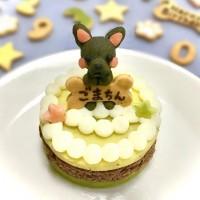 愛犬マスコットケーキ お肉ケーキ6cm