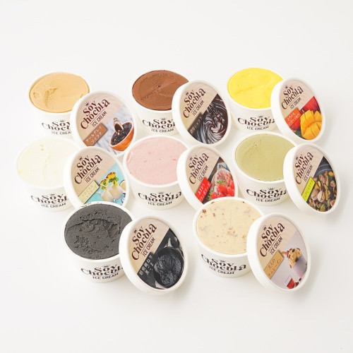 SOY ICE CREAM クラフトアイスクリーム 6個セット(ミニカップ6種類)
