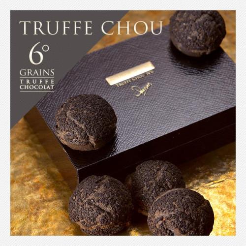 ~アイスで食べても美味しい~ トリュフシュー TRUFFE CHOU