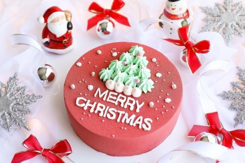 【クリスマスケーキ2020】ツリーのセンイルケーキ~チョコレートムースケーキ~