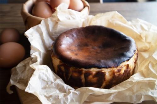 いわき アムバスクチーズケーキ 5号