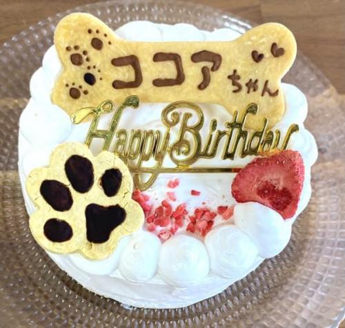 ワンちゃんと飼い主さんが一緒に食べられるお祝いケーキ