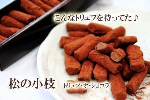 チョコレート 松の小枝 トリュフ・オ・ショコラ60本入