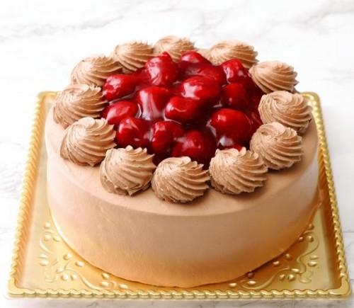 モンテローザ 苺ショコラデコレーションケーキ 5号
