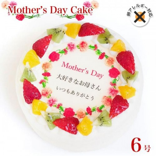 アレルギー対応 卵不使用 母の日ケーキ  母の日カーネーション メッセージプリントフルーツデコレーションケーキ 6号 18cm cream-6-mother-noegg