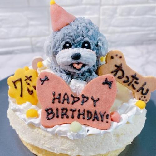【犬用】うちの子ケーキ レアチーズ