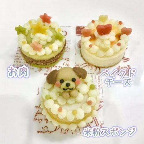 選べるミニケーキ2個セット【名入れ対応♪】