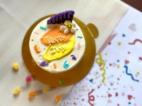 お好みの2色でカスタマイズ!ペイント&クラッカーセンイルケーキ 4号