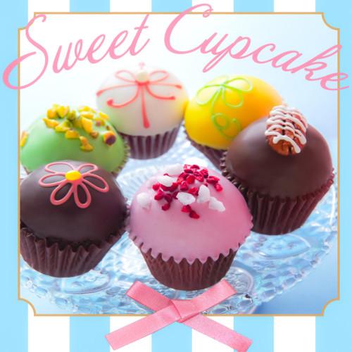 【ファクトリーシン】スウィートカップケーキ 6ヶ入