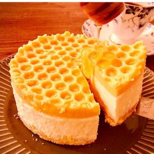 純粋蜂蜜レアチーズケーキ★ 純粋蜂蜜付き HONEY CHEESE CAKE 4号