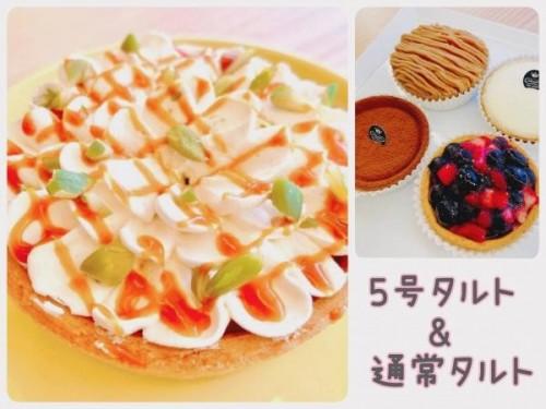 【メディアで多数紹介!】5号 バナナフルーツチーズタルト「キャバナ」+人気アソートチーズタルト4個 人気セット