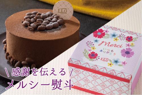 【FLO】ショコラアメール 4号 ◆メルシー熨斗◆