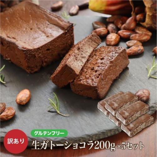 【グルテンフリー】 訳ありガトーショコラ「アウトレット」5本セット 1kg チョコレートな関係