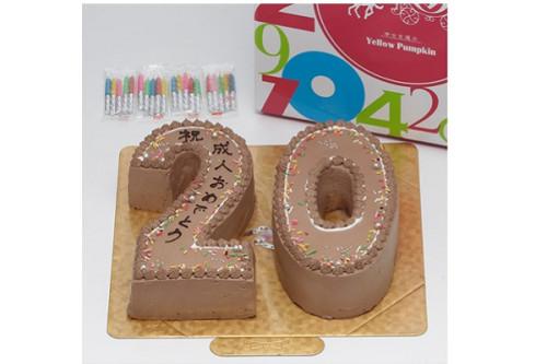 ナンバーケーキ チョコ 8号 24cm