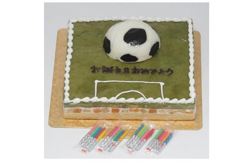 サッカーフィールドケーキ 8号 24cm